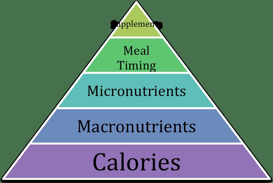 dieta bodybuilder