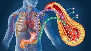 sensibilità-insulinica