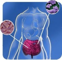 dieta microbioma intestinale
