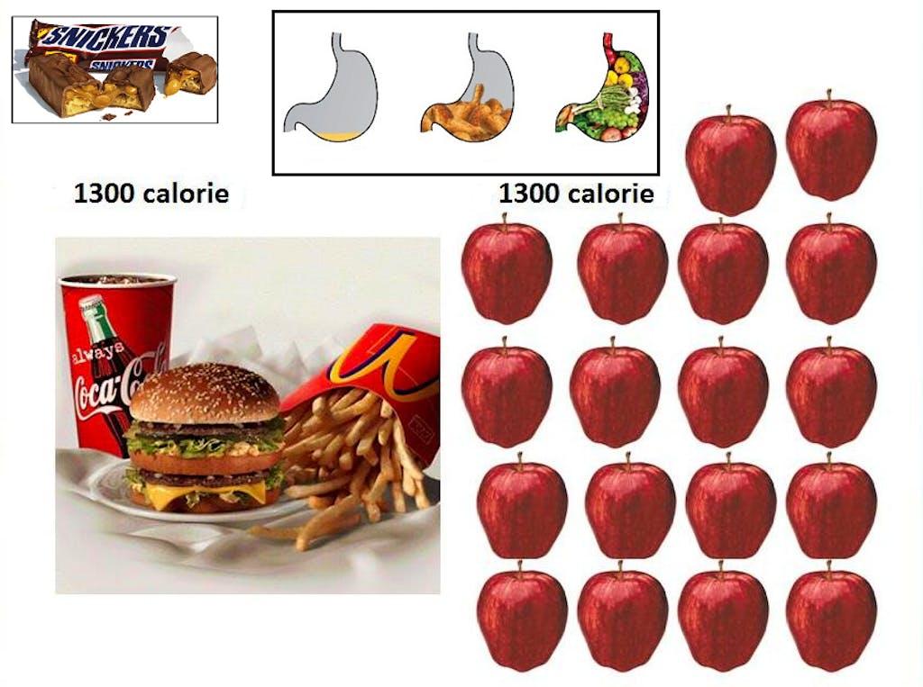fame dieta
