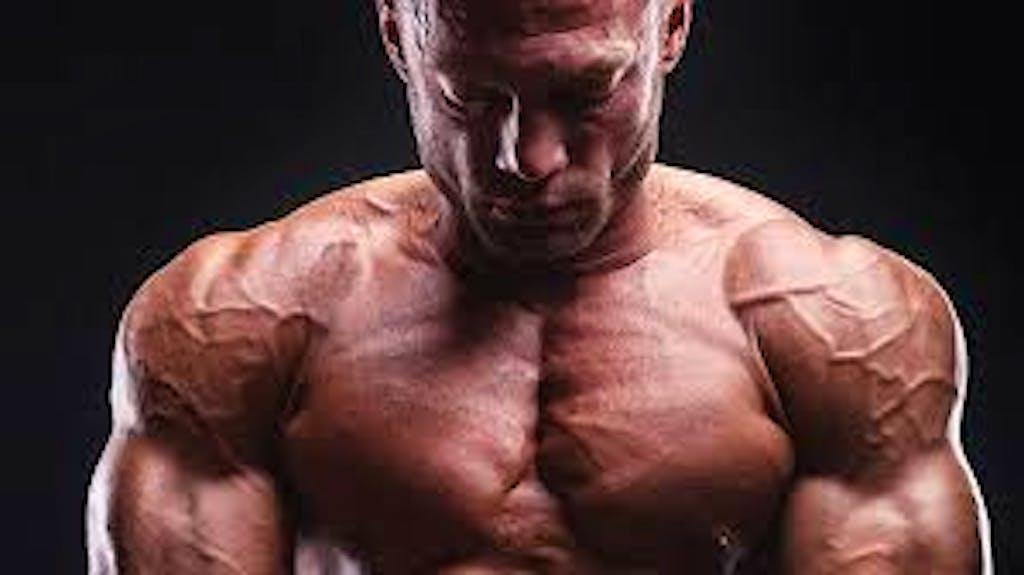 allenamento deltoidi